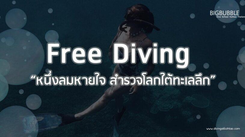 """Free diving """"หนึ่งลมหายใจ สำรวจโลกใต้ทะเลลึก"""""""