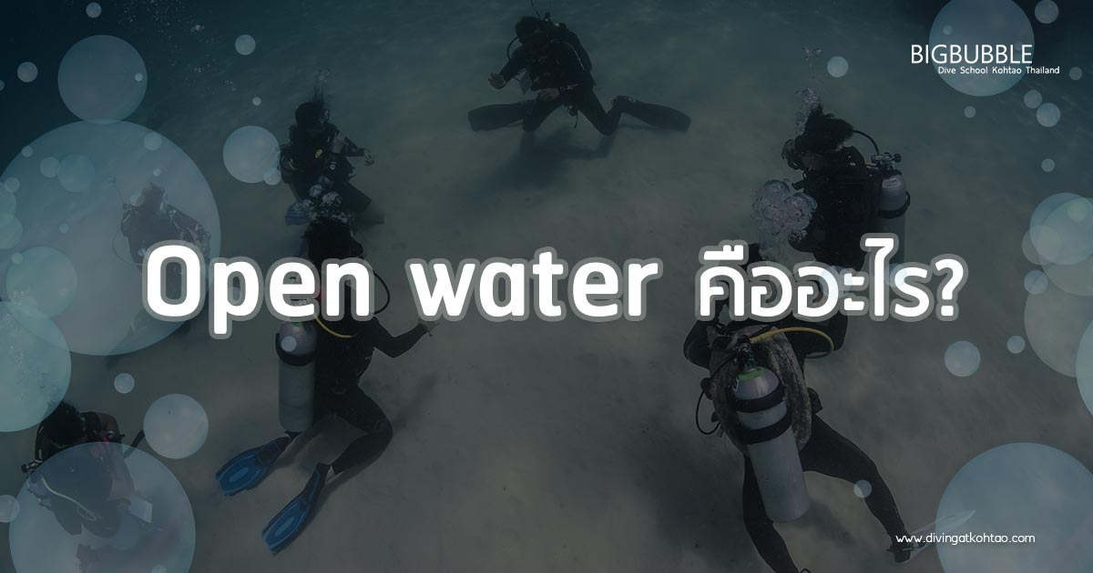 Open water คืออะไร? | BIGBUBBLE DIVING KOH TAO THAILAND
